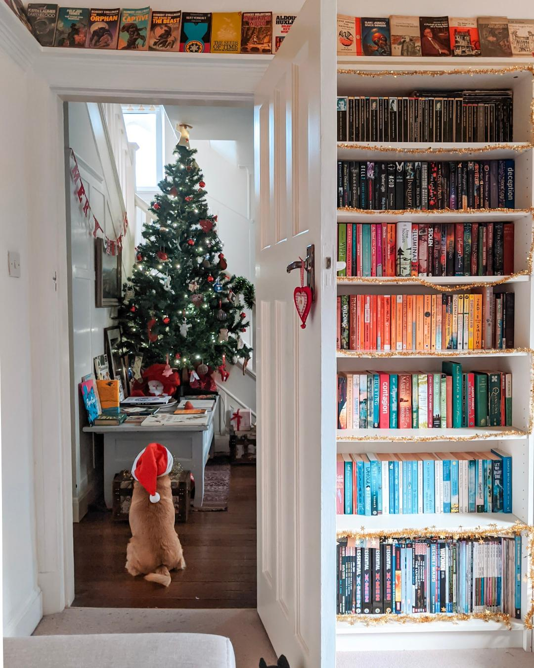A dog in a Santa hat sitting in an open doorway next to a rainbow bookshelf and looking at a Christmas tree to represent a post listing our 2020 top 15 books.